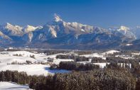 The national park of the Bavarian Forest
