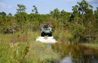 Big Cypress National Reserve