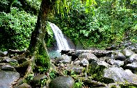 The National Park of Guadeloupe