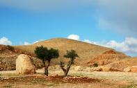 The hills of the centre : The central regions - Israel and the Occupied Palestinian Territories