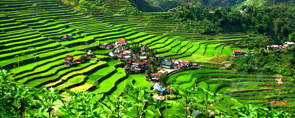 Banaue Philippines  city pictures gallery : Travel Asia Travel to Philippines Visit Philippines Banaue & Batad ...