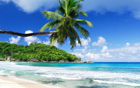 Visit Seychelles : Reasons to go Easyvoyage