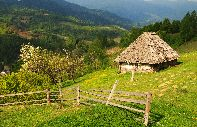 The Carpathian Mountains - Ukraine