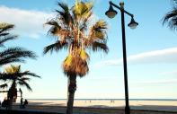 The beaches of Valencia
