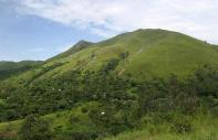 The Mountain Trail :  - Cameroon