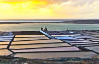 Lanzarote - The salt marshes