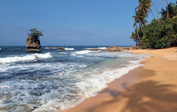 The Pacific Coast : The Pacific Coast of Colombia - Colombia