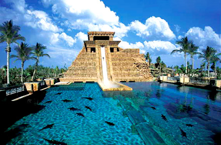 Swimming With Sharks The World S Most Extravagant Pools