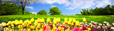 10 Eggcelent UK spring time spots